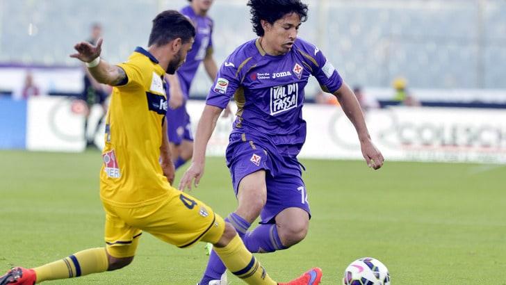 Fiorentina, Mati Fernandez fino al 2018