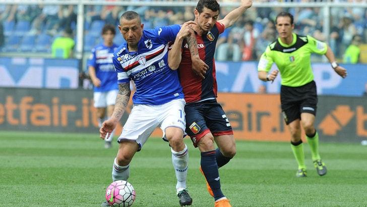 Serie A Sampdoria, lavoro a parte per Palombo