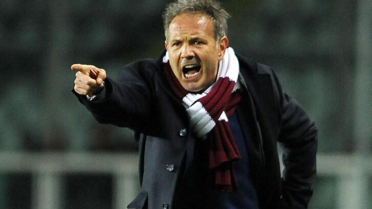 Torino, Mihajlovic: «Confermo il mio obiettivo: è l'Europa»