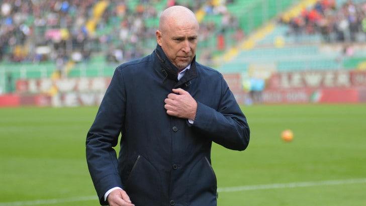 Coppa Italia Chievo, Maran: «Faremo la nostra prestazione»