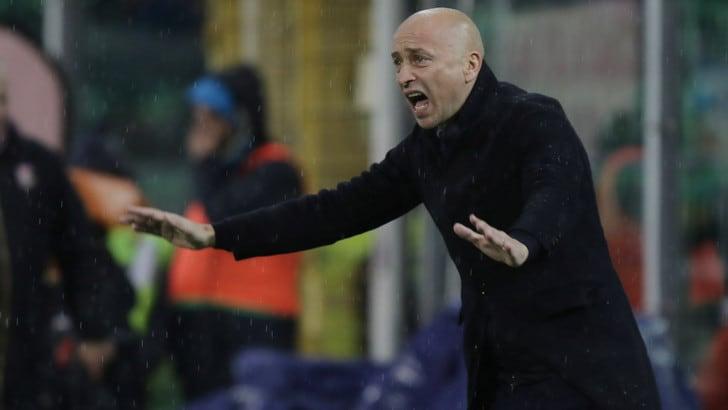 ULTIM'ORA - Palermo, si è dimesso Corini. Il club valuta se