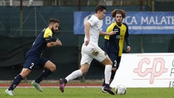 Lega Pro, si ferma il Venezia. Vincono Padova e Parma