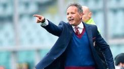 Torino, la resa dei conti: Mihajlovic vuole garanzie tecniche