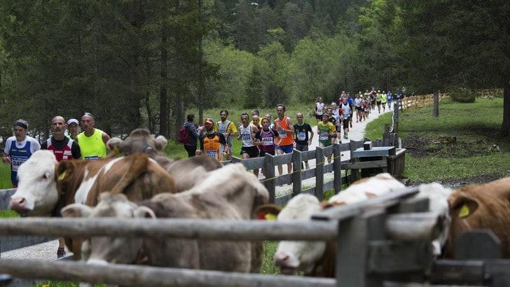 Tre giorni di gare ed eventi alla Cortina Dobbiaco Run