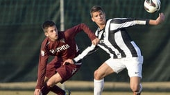 Calciomercato Viterbese, preso l'ex Juventus Kabashi