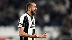 Juventus, Chiellini: «Lo scudetto è il primo obiettivo. La Champions...»