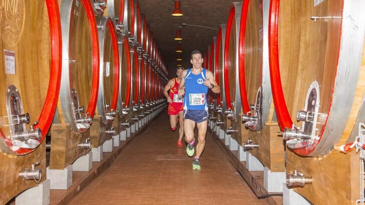 Valtellina Wine Trail, la corsa off road tra le cantine
