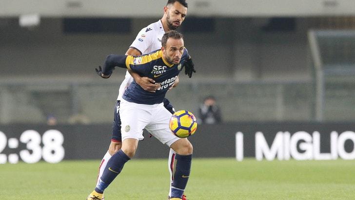 Serie A Bologna, Donadoni ritrova Gonzalez