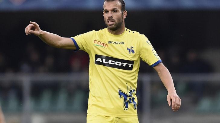 Serie A Chievo, Meggiorini: «Speriamo di fare punti con la Roma»