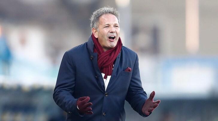 Torino, Mihajlovic arrabbiato: «Due punti buttati»