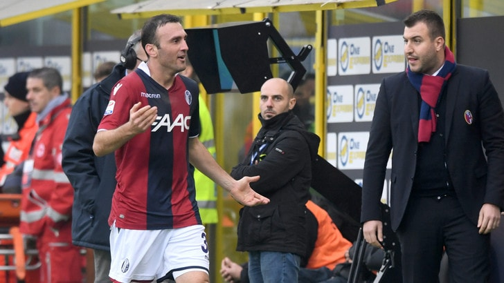 Serie A Bologna, Torosidis influenzato: salta l'allenamento