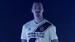 «Los Angeles, benvenuta a Zlatan»: Ibrahimovic si ufficializza ai Galaxy