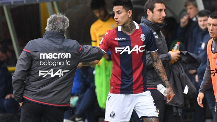 Serie A Bologna, Pulgar fermo. Sampdoria a rischio