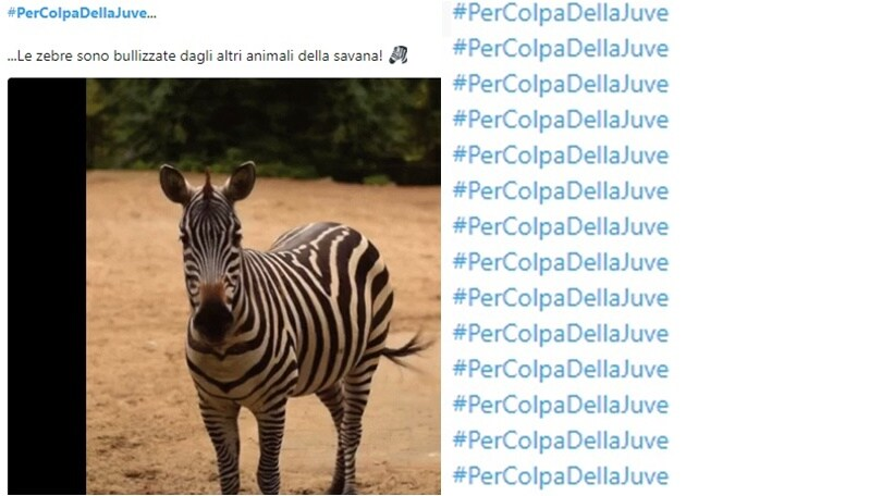 Juventus, il nuovo hashtag #PerColpaDellaJuve spopola sui social