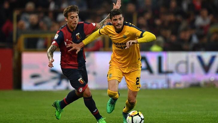 Serie A Verona verso l'Udinese, ancora terapie per Valoti