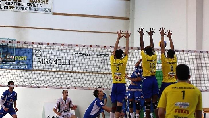 Volley: Junior League, Lube e Verona protagoniste della 1a giornata