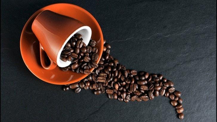 Al via Turin Coffee, domani e domenica 10