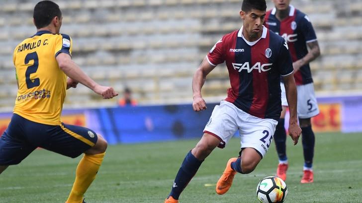 Calciomercato Bologna, Masina ha firmato col Watford
