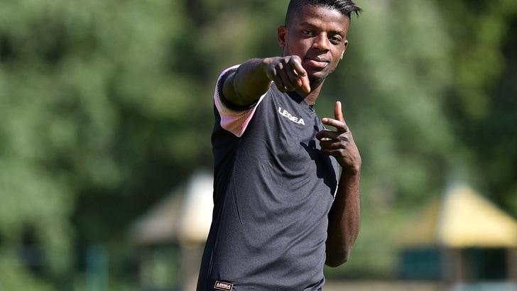 Calciomercato Palermo, ufficiale: Gnahoré si trasferisce all'Amiens