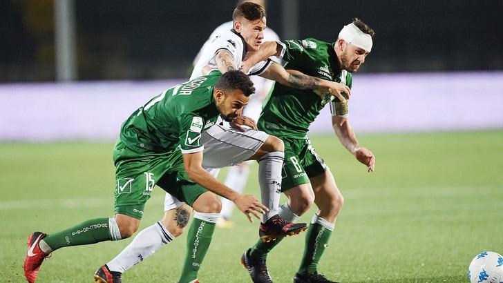 Serie B Avellino, il Tar conferma l'esclusione dal campionato