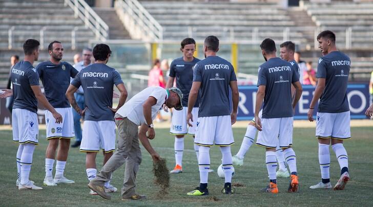 Serie B, il giudice sportivo: Cosenza-Verona 0-3