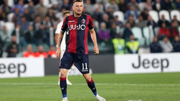 Serie A Bologna, si ferma Krejci. Differenziato per Skorupski e Falcinelli