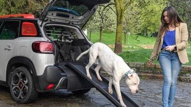 Best Event Awards, Citroën vince per il kit di accessori da viaggio per animali
