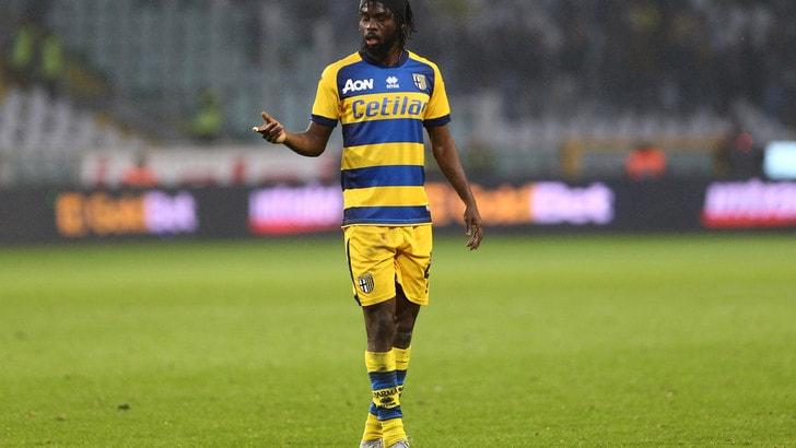 Serie A Parma, Gervinho out: lavoro personalizzato e terapie