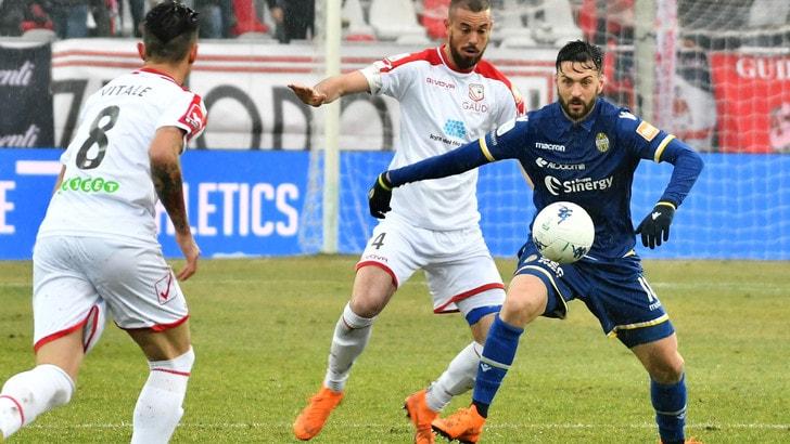 Serie B: altro stop per il Verona, il Cosenza stende il Cittadella