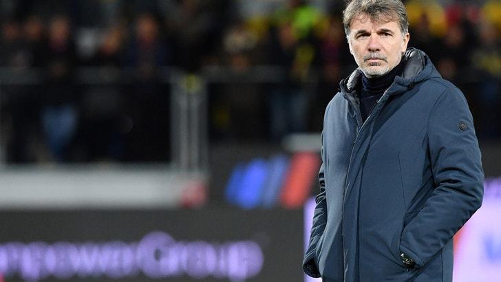 Serie A Frosinone, Baroni: «Vittoria che ripaga il lavoro svolto»