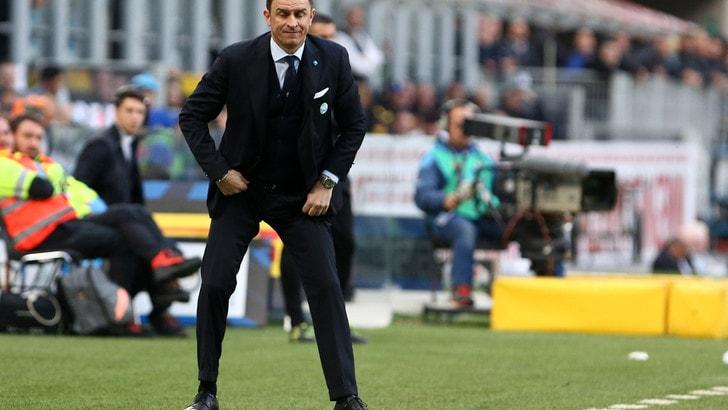 Serie A Spal, Semplici: «Roma? Hanno valori eccellenti, dovremo essere perfetti»