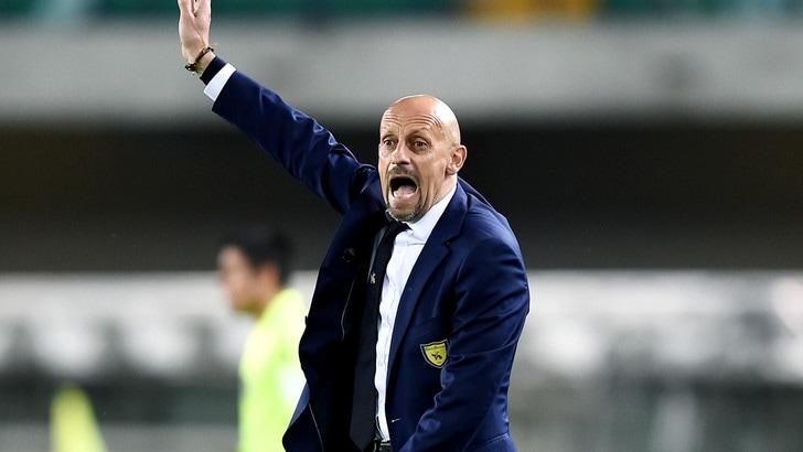 Serie A Chievo, Di Carlo: «Convinto che faremo una grande prestazione»