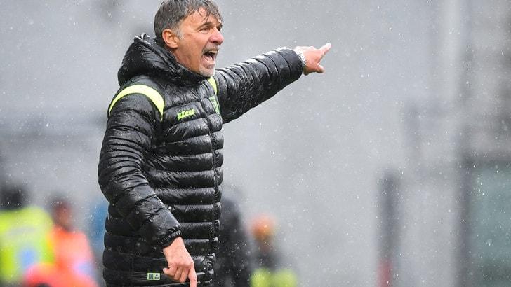 Serie A Frosinone, Baroni: «In me cresce voglia di riscatto»