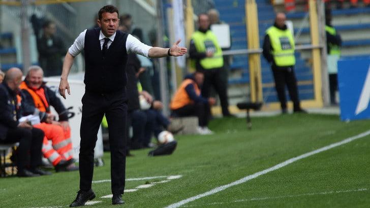 Parma, D'Aversa commosso: «Contro la Juve abbiamo costruito la nostra salvezza»