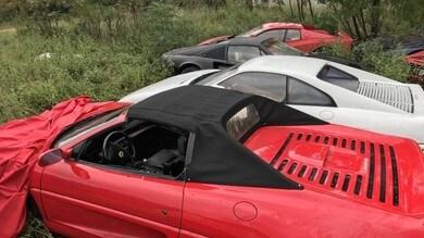 Ferrari, 11 auto storiche lasciate marcire in un campo   Le Foto