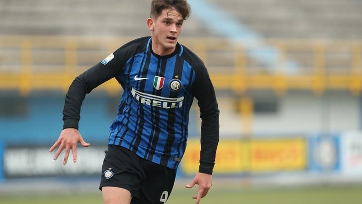 Parma, ufficiale: ecco Adorante, all'Inter va Brazao
