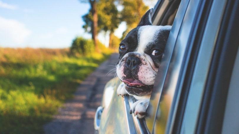 Risparmiare il carburante dell'auto? Ecco 10 trucchetti