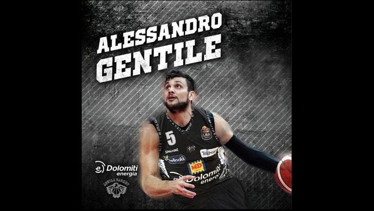 Ufficiale, Alessandro Gentile è un nuovo giocatore di Trento