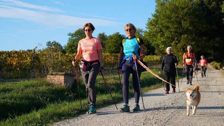 Camminare o correre, quando consumo più calorie?