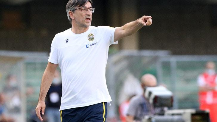 Verona, Juric rivela: