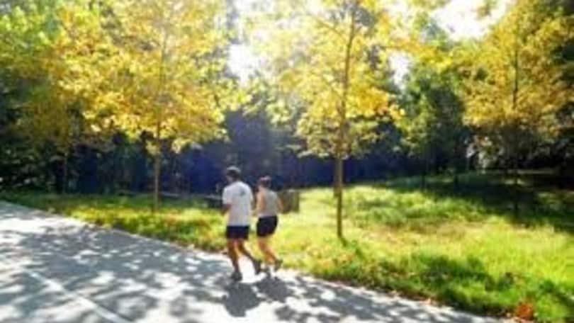 Runner e zanzare, come evitare le punture durante l'allenamento