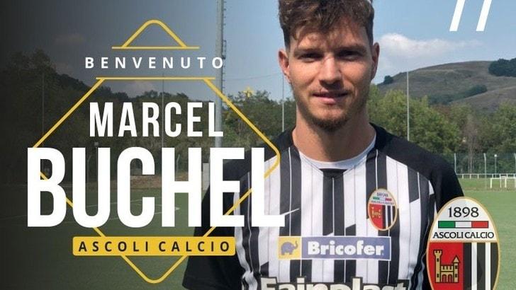 Ascoli, arriva l'ex Juve Buchel