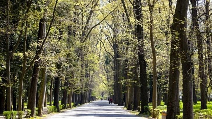 Nasce la Conad Green Half Marathon, il nuovo evento di Firenze Marathon