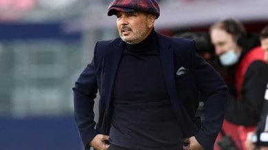 Bologna, Mihajlovic: