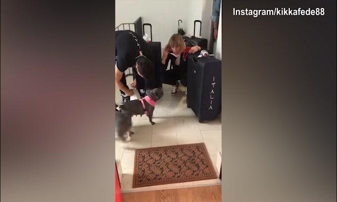 Federica Pellegrini torna a casa: i cani festeggiano!